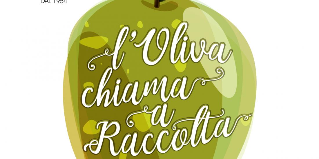 olivachiamaraccolta2018 olio guglielmi